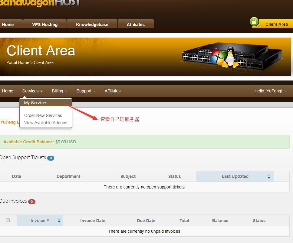 搬瓦工(bandwagon)服务器购买及初步环境搭建图文教程
